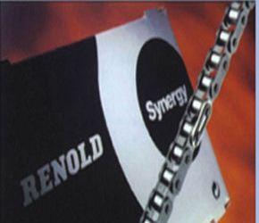 RENOLD Synergy链条
